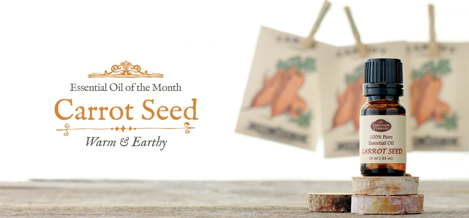 October: Carrot Seed 2016