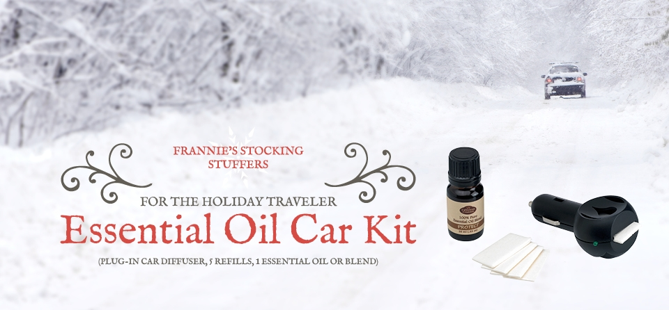 Stocking Stuffer - Car Kit
