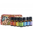 Chakra Complete Set with Travel Bag