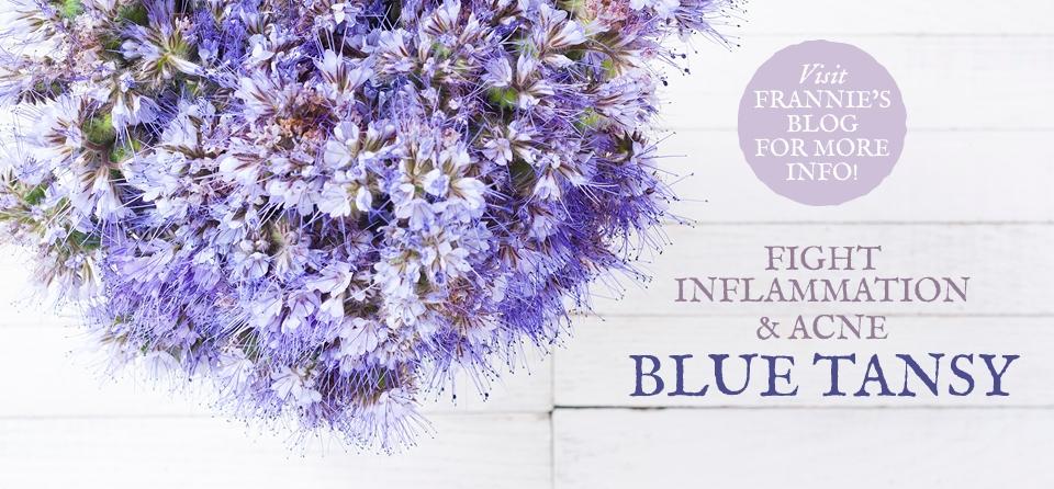 June Slider AF Blue Tansy EO