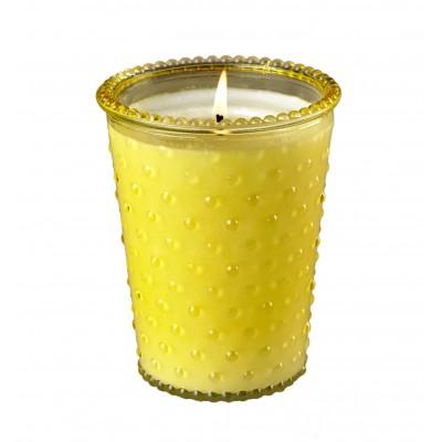 Bug Away All Natural Soy Candle 16oz Jar